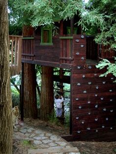 Climbing wall leading up to treehouse. Researching diy construction and costs! Looks promising!