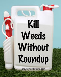 Kill weeds without using Roundup: Yes you can!