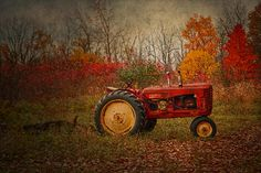 """""""Harvest Tapestry"""" by Kristina Austin Scarcelli.  A vintage tractor and backdrop of autumn foliage create a tapestry of colors and textures."""