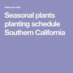Seasonal plants planting schedule Southern California