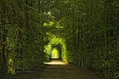 """500px / Photo """"Limburg, The Netherlands"""" by Martien Janssen"""