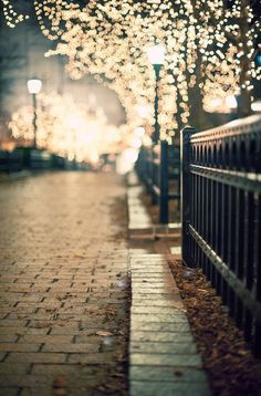 lights in chicago. Bokeh done right. Fotografia Pb, Beautiful World, Beautiful Places, Jolie Photo, Oh The Places You'll Go, Pretty Pictures, Wonders Of The World, Street Photography, City Lights Photography