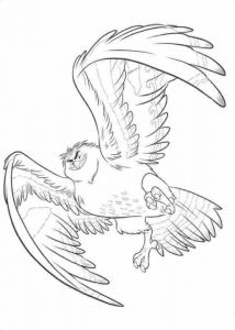 Maui As Falcon Moana Coloring Sheet - We have dedicated this page to fans of the Disney film Moana. You can find Moana coloring pictures to color. Moana Waialiki is a princess who will liv. Bird Coloring Pages, Online Coloring Pages, Cartoon Coloring Pages, Disney Coloring Pages, Printable Coloring Pages, Adult Coloring Pages, Coloring Books, Moana Coloring Sheets, Coloring Sheets For Kids