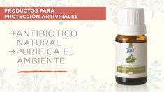 Aromatherapy Oils, Tea Tree, Essential Oils, Natural Antibiotics, Oil, Feminine, Clothing, Essential Oil Uses, Essential Oil Blends