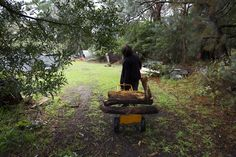 An action shot which shows some aspects of the property. This image successfully shows how she takes the wood back to the house from the land. The details captured within the image are prominent and the contrast and colouring are strong. potential final.