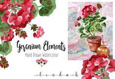 Geraniums Watercolour  by Linda K. Design on @creativemarket