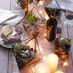 Beautiful Faceted Terrariums Bring A Little Bit of Nature Into Your Space | west elm