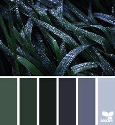 Dew Tones - http://design-seeds.com/home/entry/dew-tones2