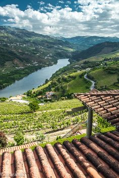 Douro River Valley, the winding, a terraced region that produces the country's beloved port wine. This is Portugal's answer to Germany's romantic Rhine River Douro Portugal, Portugal Travel, Spain And Portugal, Places To Travel, Travel Destinations, Places To Go, Algarve, Wine Tourism, Douro Valley