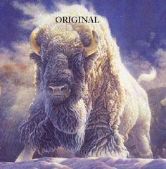 White Buffalo... ~Counted~ Cross Stitch Pattern ~Computer Generated~... BBXS