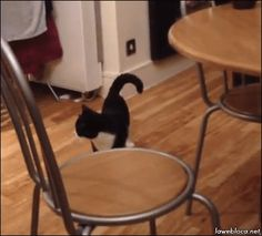 When you finally see a clear exit to sneak out of a party. | 21 Perfect Reaction GIFs For Every Occasion