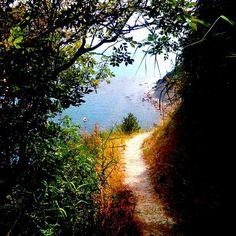 @bdb8787   Sentiero per la Spiaggia del Baffo   #conero Parco del Conero Riviera del Conero