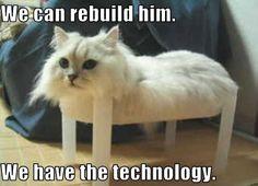 We can rebuild him