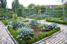 Kitchen Vegetable Garden | jardin potager | Flickr - Karl Gercens | bauerngarten