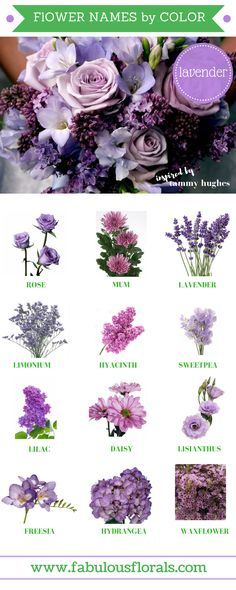 Purples How To DIY Wedding Flowers! 2018 Wedding Flower Trends. Easy DIY Tutorials and How to Tips & Tricks! #diywedding #diyflowers #howtomakeabouquet www.howtodiyweddingflowers.com