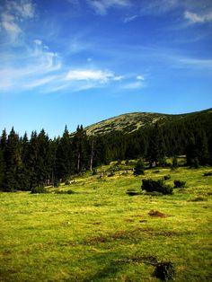 Morning at Syvulia Mount. by Lana Neman on 500px #mountains #landscape #Carpathians #Ukraine