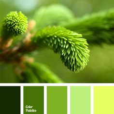 Color Palette Ideas | Page 16 of 301 | ColorPalettes.net