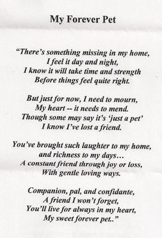 1000 Ideas About Cat Poems On Pet Loss Cats And