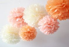 Hey, I found this really awesome Etsy listing at https://www.etsy.com/listing/205542582/warm-sunset-6-tissue-paper-pom-poms-baby