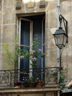 This reminds me of the hotel my sister and I stayed in Paris, France. Such a beautiful city. Apartment Balconies, Paris Apartments, Parisian Apartment, Paris 3, Paris France, Paris Style, Balcony Flowers, Balcony Plants, Little Paris