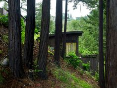 This duo of cabins nestled within a forest in Mill Valley near San Francisco were designed by Feldman Architecture to accompany an existing residential dwelling. The Mill Valley Cabins were built primarily to provide additional recreation. Green Architecture, Architecture Photo, Sustainable Architecture, Mill Valley California, San Francisco, Guest Cabin, Wood Siding, Barn Siding, Commercial Architecture