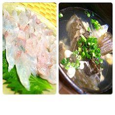 旬の魚は旨いね。 - 53件のもぐもぐ - マゴチの刺身と潮汁 by okappie