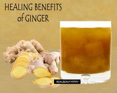 Across the globe, Ginger is used as a natural herb or a spice. Due to many health benefits of ginger, this amazing herb is considered [...]