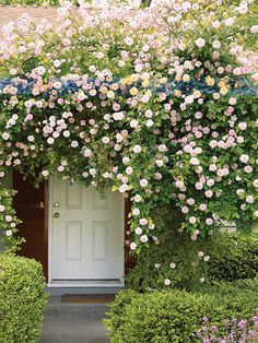 Doors let you in. Doors keep you out. Doors let you out. Doors keep you in. Doors let them out. Doors keep them in. Doors aren't just inanimate objects. Garden Cottage, Home And Garden, Cottage Door, Garden Living, Cozy Cottage, Beautiful Gardens, Beautiful Flowers, White Flowers, Rose Flowers