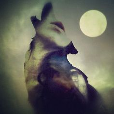 She wolf - She wolf - Wolf Pack, Potnia Theron, Tattoo Liebe, Howl At The Moon, She Wolf, Wolf Girl, Wolf Spirit, My Demons, Double Exposure
