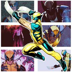 Wolverine Through the Comics