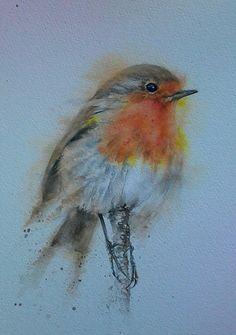 Robin Original Watercolour by Sylvia Farrow - Arthouse Gallery Robin Bird Tattoos, Robin Tattoo, Watercolor Bird, Watercolor Paintings, Watercolor Christmas, Woodland Art, Bird Artwork, Animal Paintings, Bird Paintings