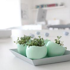 ... für diese zuckersüßen Kresse-Eier :wink:))) Sie gefallen mir total gut, habe mich RIIIIIEEEEEESIG gefreut!!!!! Und total süß verpackt waren sie auch noch! DANKE!!!!!!