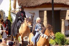 Horses, Animals, Astrid Lindgren, Animais, Animales, Animaux, Animal, Horse, Dieren