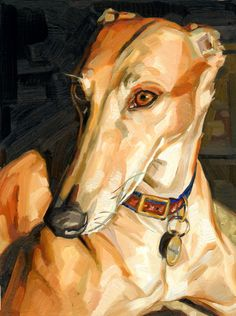 Greyhound      (Heather Horton) wow this could be my rescue Fernando