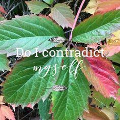 Nature's Classroom: Do I Contradict Myself?