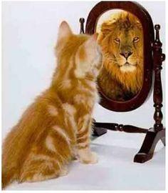 El poder de las imágenes mentales: eres lo que crees que eres.