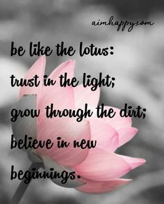 20 Lotus Flower Quotes to Inspire Growth & New Beginnings The lotus is a flower with a wealth of spiritual symbolism tied to Egyptology Hinduism and Buddhism. Each culture lends a slightly different take but the lotus in general is reflective of spiritual Lotus Quote, Lotus Flower Quote, Lotus Flower Meaning, Lotus Meaning, Lotus Flowers, Diy Flowers, Flower Qoutes, Great Quotes, Me Quotes