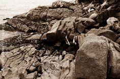 Férias pedras e amores escalada boulder Asturias Guarujá Brasil