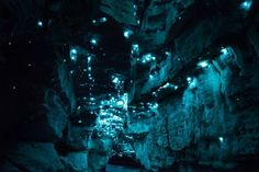 Photographer Captures Incredible Displays Of Light Created By Glow Worms In New Zealand Caves