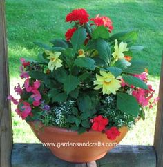 inexpensive and 'easy to grow'  flowers in this arrangement