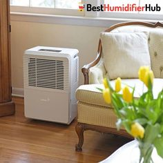 Ivation 70 Pint Energy Star Dehumidifier WITH PUMP LargeCapacity For Spaces Up To 4500 Sq Ft Includes Programmable Humidistat Hose Connector Auto Shutoff / Restart Casters Small Humidifier, Steam Humidifier, Warm Mist Humidifier, Room Humidifier, Cool Mist Humidifier, Humidifier Filters, Ikea, Seattle Homes, Space Up