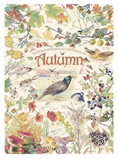 Birds, berries and beautiful fall colors are the focus in the this lovely 1000 piece puzzle, Country Diary: Autumn from the collection of Edith Holden. Edith Holden, Autumn Illustration, Nature Journal, Illustrations, Halloween, Vintage World Maps, Thing 1, Birds, Seasons