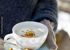 Rezept Pastinakencreme-Suppe mit Croûtons