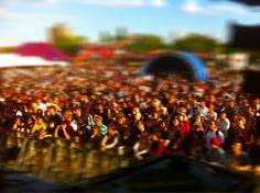 festival crowd shot...