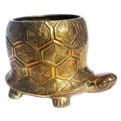 Brass Turtle Planter design inspiration on Fab.