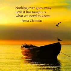 """""""Nothing ever goes away until it has taught us what we need to know."""" ~Pema Chodron"""