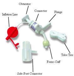 Tracheostomy Nursing Care and Management Nursing Tips, Nursing Care, Nursing Notes, Surgical Nursing, Funny Nursing, Nursing Information, Respiratory Therapy, Respiratory System, Rn School