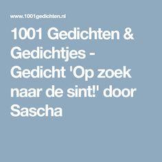 1001 Gedichten & Gedichtjes - Gedicht 'Op zoek naar de sint!' door Sascha