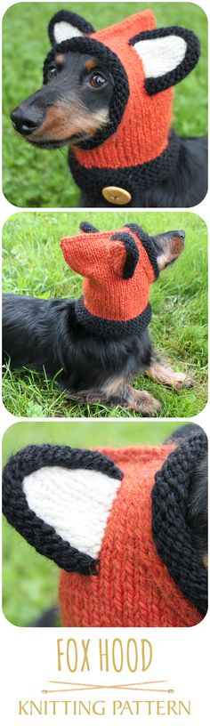 Knitted fox hood for a mini dachshund! LOL! #dog #cuteanimals #cutedogs #foxhood #knittingpattern #smalldoghat #doghat #dachshund #minidachshund