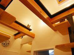 The cats have a little stair system that looks like shelves. And then, up near the ceiling? A modern cat run. This is very cool.